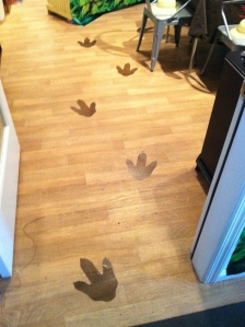 I love contact paper!  This dark wood grained type was perfect to trace dino prints, cut out, peel and stick onto the floor!  Easy removal too!